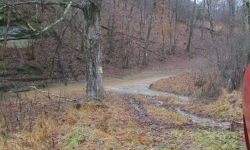 WV: Tyler County - 149 Acres