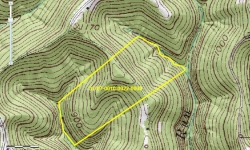 WV: Pleasants County 50 Acres