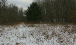 OH: Guernsey County - 182 Acres